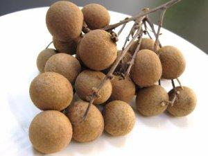 longan fruit, before peeling