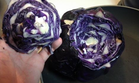 Core Cabbage with Paring Knife photo