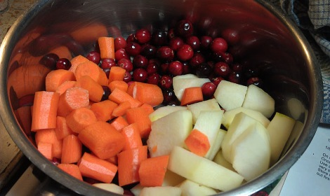 Tomato-free ketchup ingredients: pear, carrot, cranberry photo