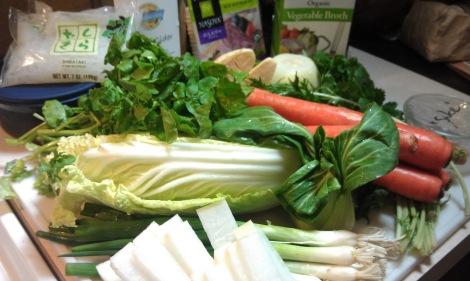 Sukiyaki ingredients (photo)