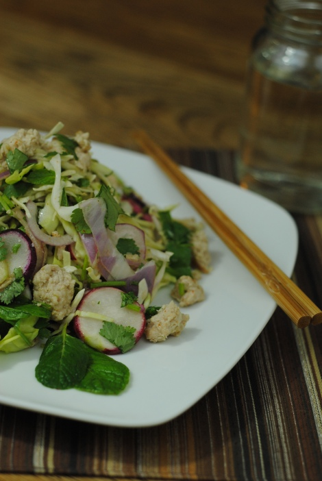 Easy, Delicious Larb Gai (Thai Chicken Salad) (photo)