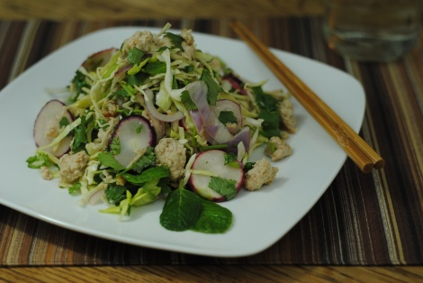 Larb Gai (Thai Chicken Salad) (low-amine, gluten-free, soy-free, dairy-free, nut-free, fish-free, shellfish-free, paleo, low-fat, low-carb) photo