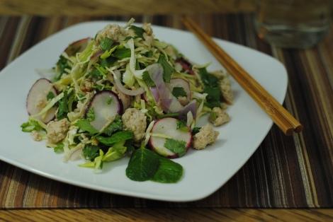Larb Gai (Thai Chicken Salad) (low-amine, gluten-free, soy-free, dairy-free, nut-free, fish-free, shellfish-free, paleo, low-fat, low-carb) photo