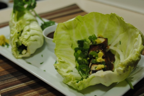 Low-Amine Teriyaki Tofu Cabbage Wraps (low-amine, gluten-free, dairy-free, nut-free, tomato-free, vegetarian, vegan) photo